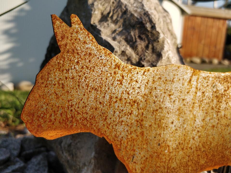 Chat en acier corten avec corrosion naturelle
