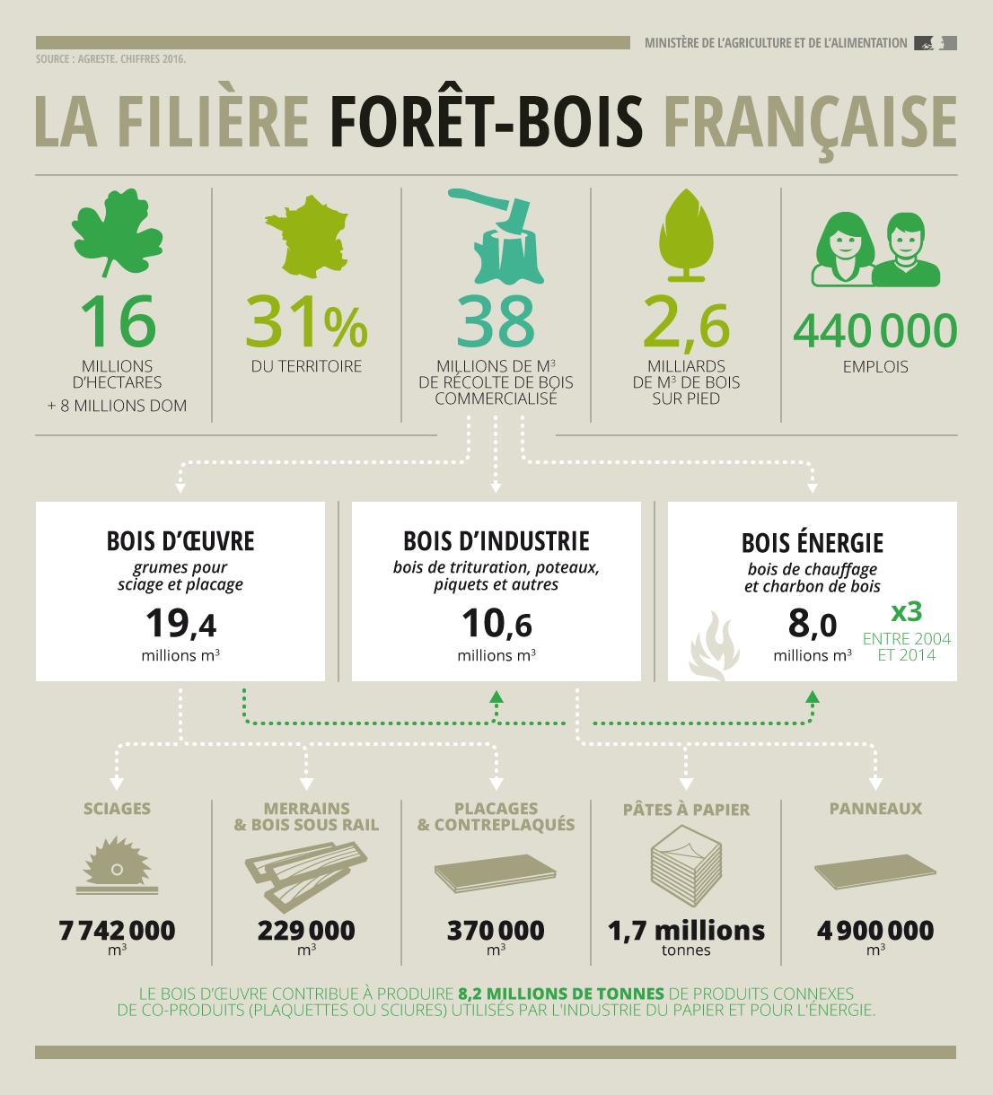 filière forêt-bois en france 2017