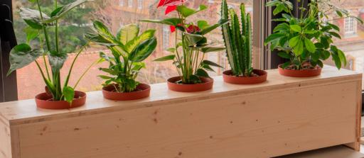Fabriquer une jardinière en bois sur mesure !